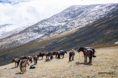 Mongolia in the Saddle