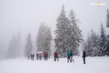 Beskidzka Zima