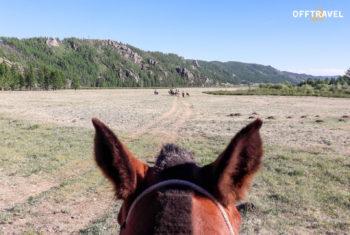 Mongolska Majówka – FILM