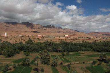 Jeźdźcy Berberii